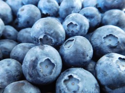 blueberries-1218467_1920