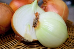 onion-1144620_1280